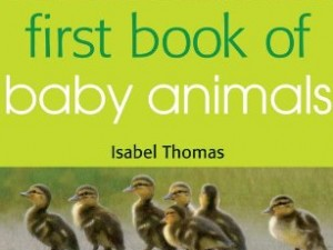 My First Book of…