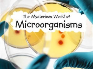 The Mysterious World of Microorganisms