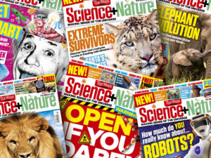 the week junior science + nature